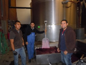 Cellar Guys moving the juice - 2013 Crush