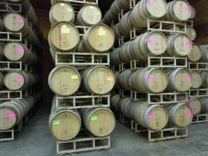 Barrels in the Hyatt Vineyards Warehouse