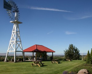 hyatt-vineyards-windmill-pavillion-picnic area